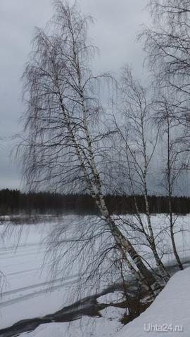 Неужели весна на пороге... Природа Ухты и Коми Ухта