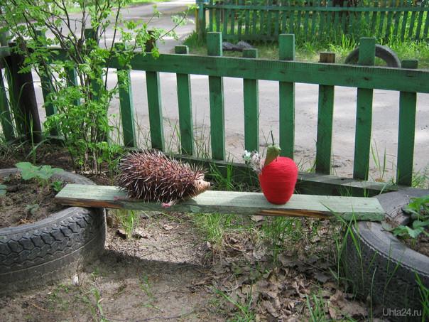 """Яблоко спелое ?"" Новая композиция Квахи. Творчество, хобби Ухта"