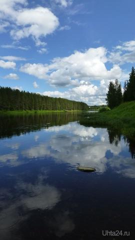Лето,ах,лето!!! Природа Ухты и Коми Ухта