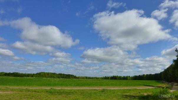По дороге с облаками... Природа Ухты и Коми Ухта