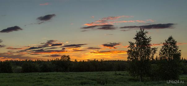 Ночка северная. Природа Ухты и Коми Ухта