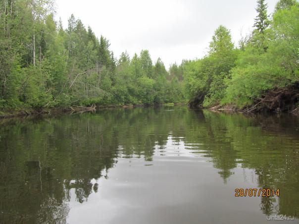 течет река,течет ручей,вобщем каждый сам по себе. Природа Ухты и Коми Ухта