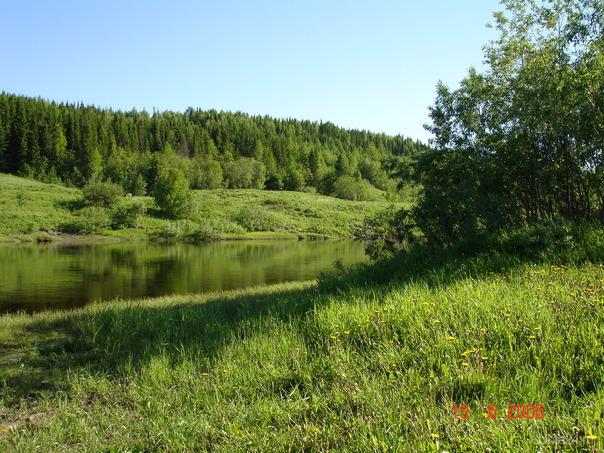 Река ухта наша красивая природа
