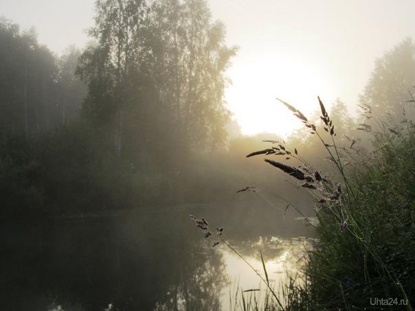 утро 1 Природа Ухты и Коми Ухта