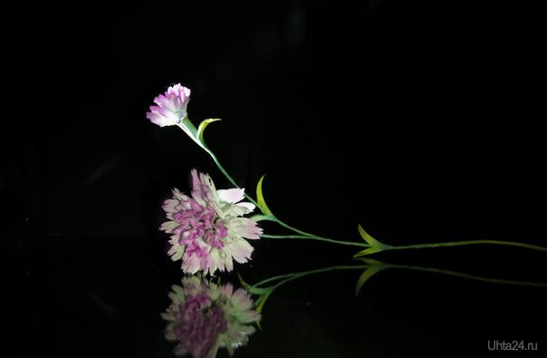 Мои первые работы в Японской школе цветоделия...таджобана... Творчество, хобби Ухта