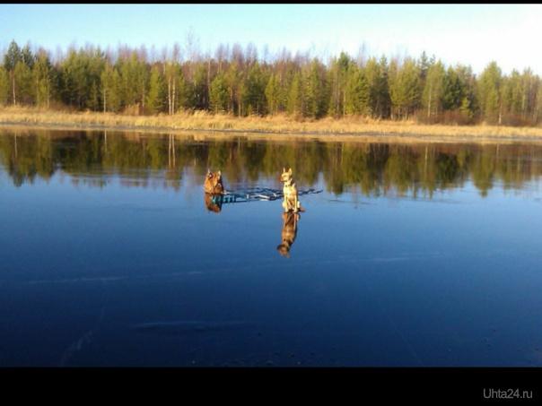 Боня на рыбалке 30.10.14  Ухта