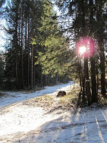 солнечно Природа Ухты и Коми Ухта