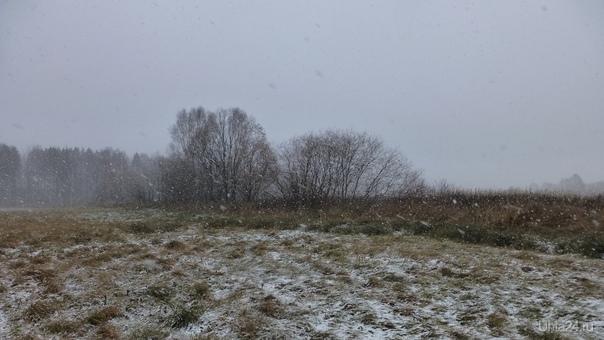 Эх,снег,снежок,белая метелица...В поле метелица нас заметелила. Природа Ухты и Коми Ухта