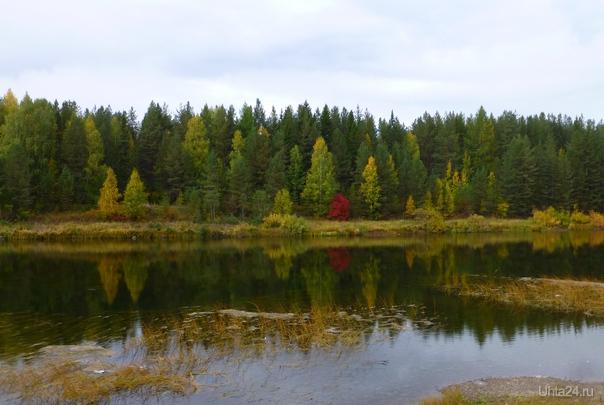 Ах,осень,ты-чудесная пора. Природа Ухты и Коми Ухта