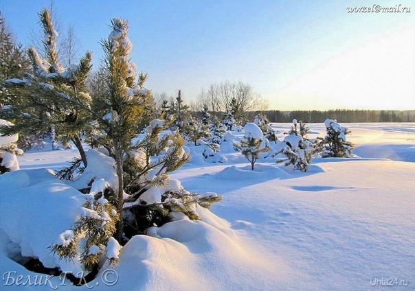 просто зима, снег, солнце, мороз Природа Ухты и Коми Ухта