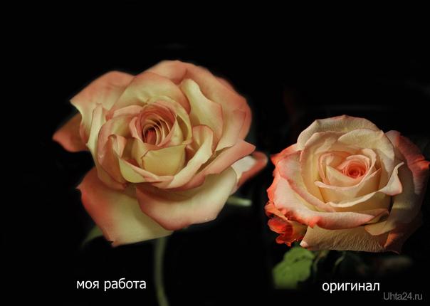 Ну вот и моя экзаменационная работа, с живой розы нужно было создать свою, не имея ни выкроек, ни схемы. Экзамен сдан))) Творчество, хобби Ухта