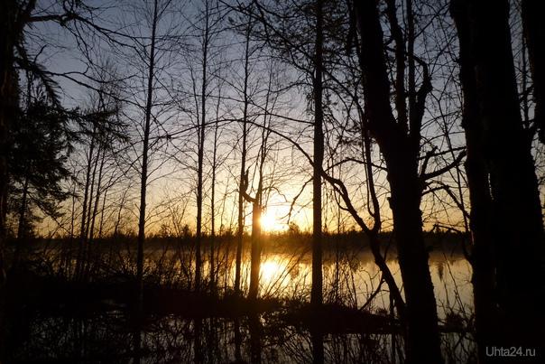 Рождение утра - незабвенный миг... Природа Ухты и Коми Ухта