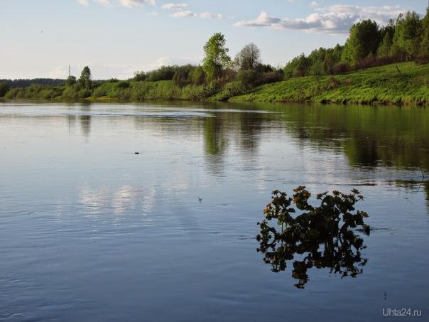 Клумба посреди реки  Ухта