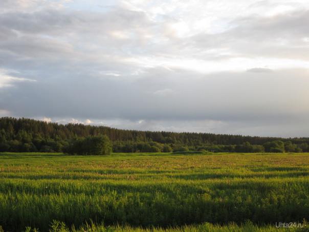 В поле  Ухта