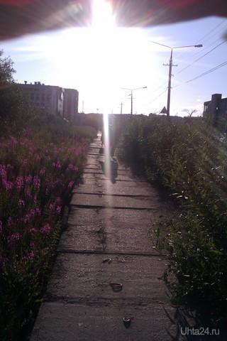 тротуар около УГТУ на ул Сенюкова  Ухта