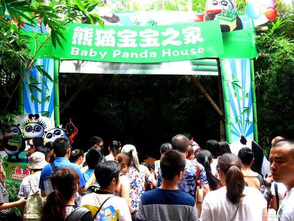 Сафари-парк в Гуанчжоу  Ухта