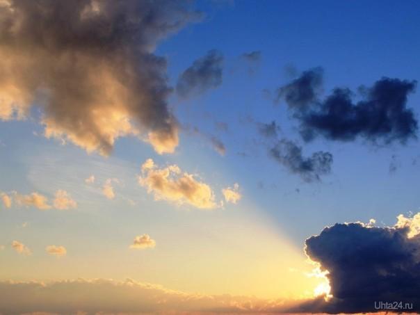 ... крокодил, солнце в небе проглотил! Природа Ухты и Коми Ухта