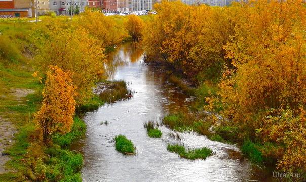 Речка Чибью в начале сентября.  Ухта
