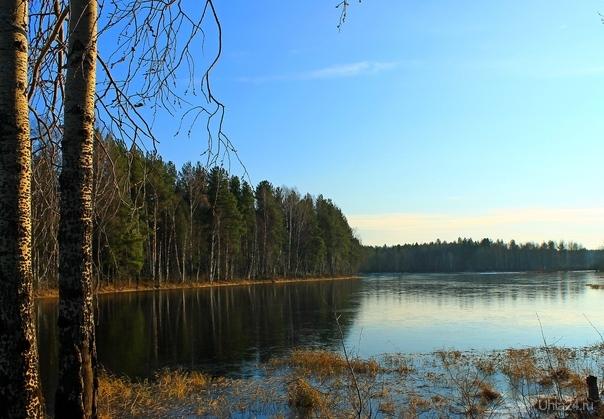 На озере Шойкир (Республика Коми) Природа Ухты и Коми Ухта