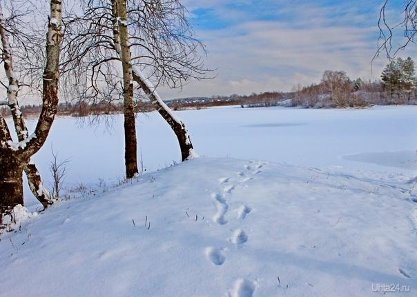Пейзаж со следами на снегу. Снято недалеко от Сыктывкара  Ухта