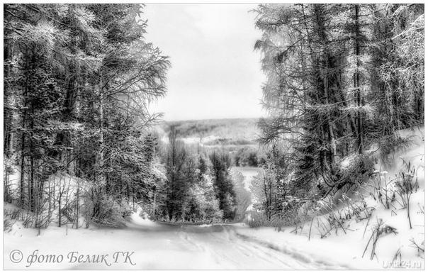 просто чёрно-белая зима  Ухта