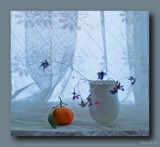 Натюрморт с мандарином и сухими васильками  Ухта