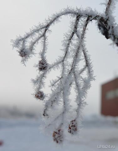 зима в Ухте Природа Ухты и Коми Ухта