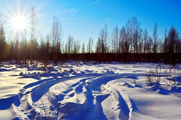 Февральский солнечный денёк. Природа Ухты и Коми Ухта
