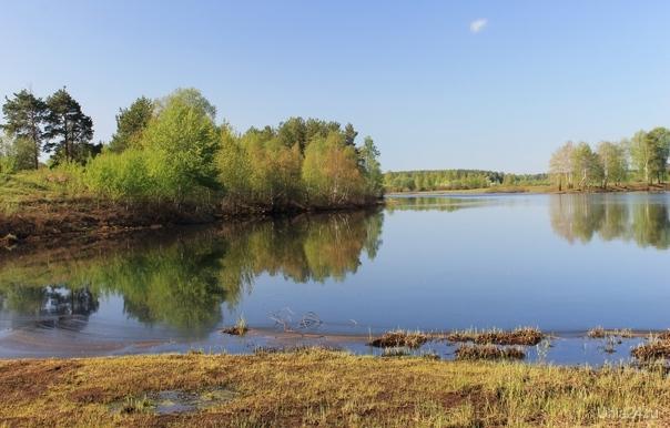 Раннее утро на озере близ Сыктывкара Природа Ухты и Коми Ухта