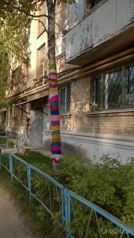 Вот такая веселая березка растет в Ухте :) Улицы города Ухта