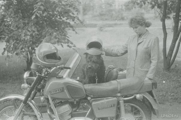Ризеншнауцеры тоже любят кататься на мотоциклах .ПДД -соблюдено -шлем ! Питомцы Ухта
