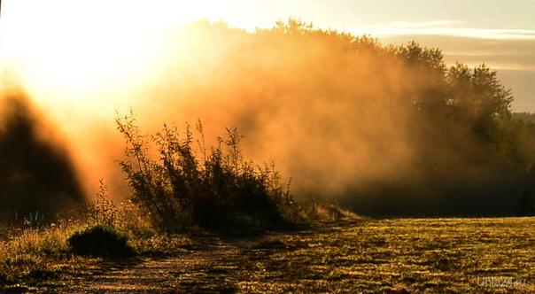 Утренний туман в парке Природа Ухты и Коми Ухта