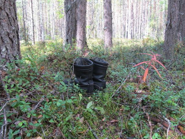 захожу в лес,а приехал то в кроссовках,смотрю-стоит переобувка чьято,ну думаю-такой же как я.спасибо мил человек,там же поставил Природа Ухты и Коми Ухта