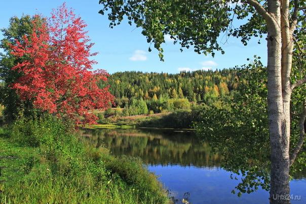 Вот и осень незаметно подошла Природа Ухты и Коми Ухта