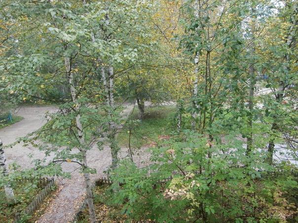 Осень из моего окна Разное Ухта
