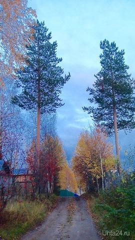 Дорога в осень.  Ухта