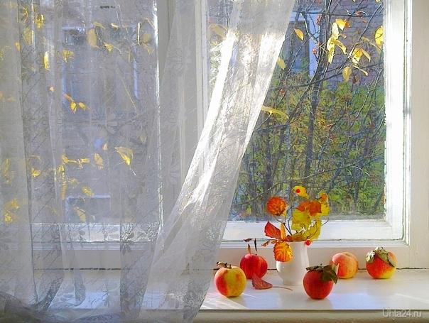 Осенний натюрморт  Ухта