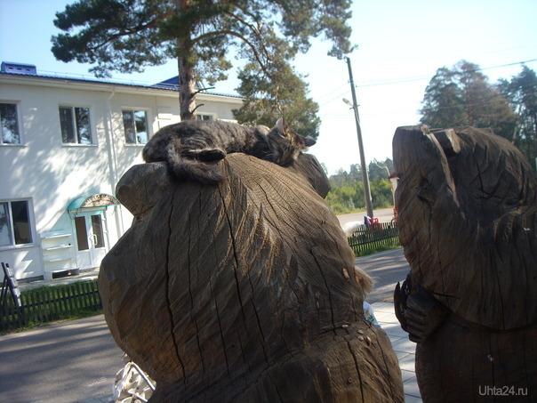 Котик пригрелся на деревянном медведе Мир глазами ухтинцев Ухта