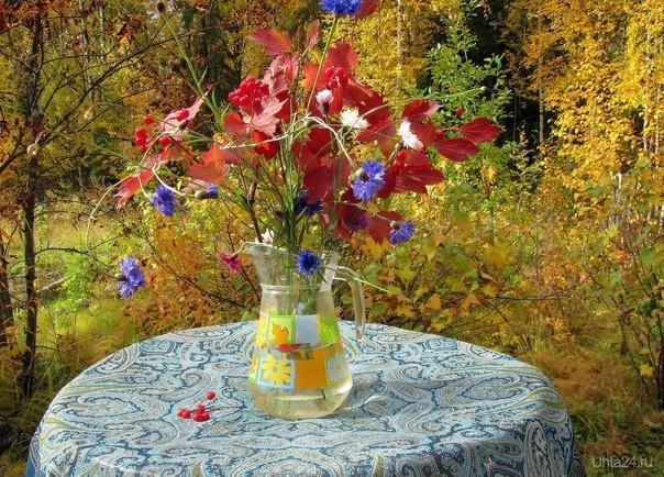 Букет из осенних листьев и васильков. На даче.  Ухта