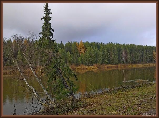 В середине октября на Ухте Природа Ухты и Коми Ухта