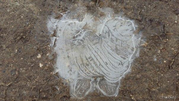 лужа замёрзла в виде собачки Природа Ухты и Коми Ухта