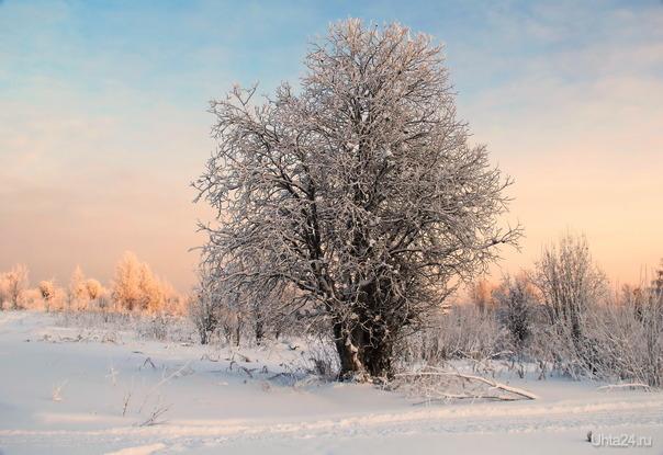 Морозный день  Ухта