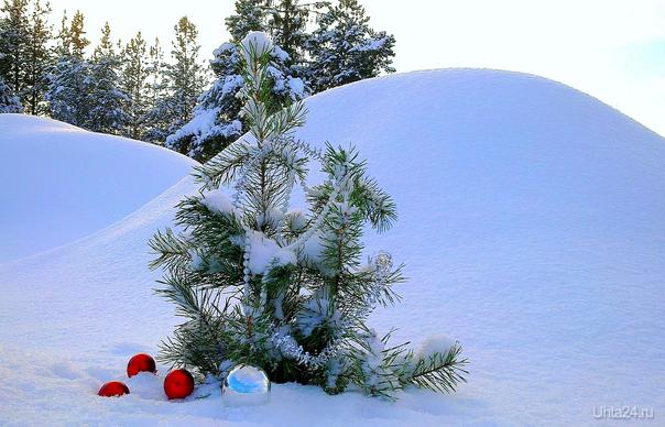 Много снега  Ухта
