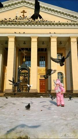 Хлеб предназначался голубям))) Один день в Ухте Ухта