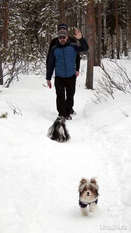 22.04 прогулка Питомцы Ухта
