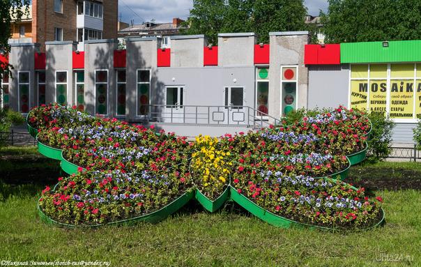Цветочная бабочка) Улицы города Ухта