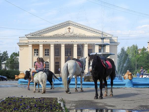 лошадки Улицы города Ухта