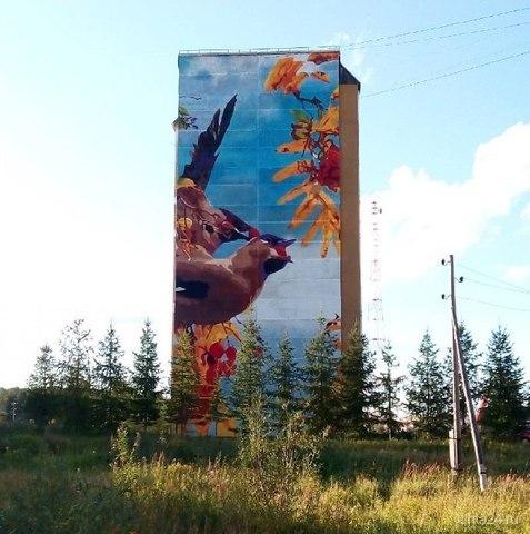 На улице Сидорова теперь вы можете наблюдать самое большое граффити в Ухте.  Ухта