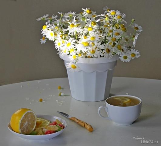 Натюрморт с чаем и ромашками  Ухта