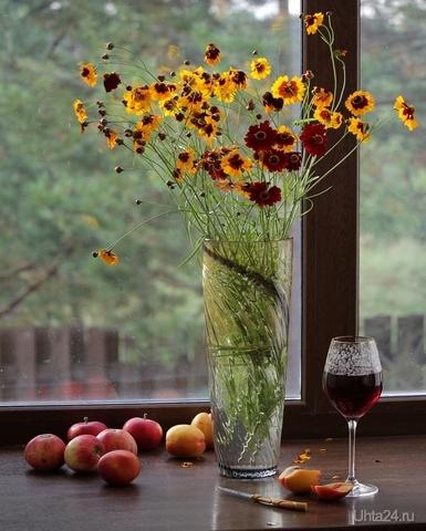Натюрморт с бархатцами и фруктами Разное Ухта